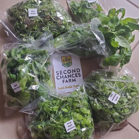 A Fresh Home Delivery from Second Chances Farm